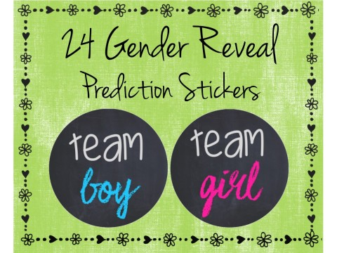 Team Boy / Team Girl - Gender Reveal Prediction Labels - Gender Reveal Baby Shower