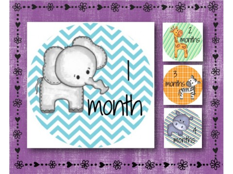 "Baby Milestone Stickers - Months 1-12 - Photo Prop Stickers - Baby Animals - 2.5"" round glossy"
