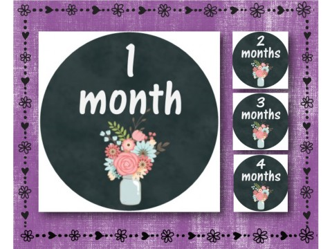 "Baby Milestone Stickers - Months 1-12 - Photo Prop Stickers - Grey & Floral - 2.5"" round glossy"