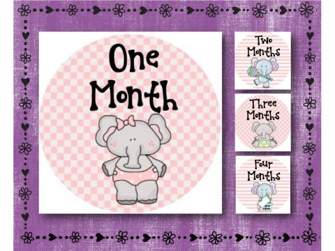 "Baby Milestone Stickers - Months 1-12 - Photo Prop Stickers - Pink Baby Elephant - 2.5"" round glossy"