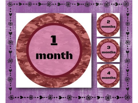 "Baby Milestone Stickers - Months 1-12 - Photo Prop Stickers - Pink Camouflage - 2.5"" round glossy"