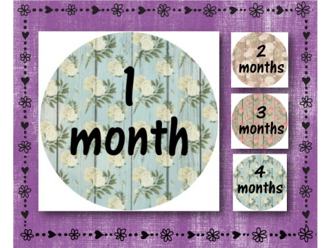 "Baby Milestone Stickers - Months 1-12 - Photo Prop Stickers - Wood w/ Flowers - 2.5"" round glossy"