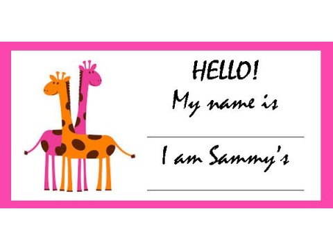 Baby Shower Name Tags - Pink & Orange Giraffes w/ Pink Border